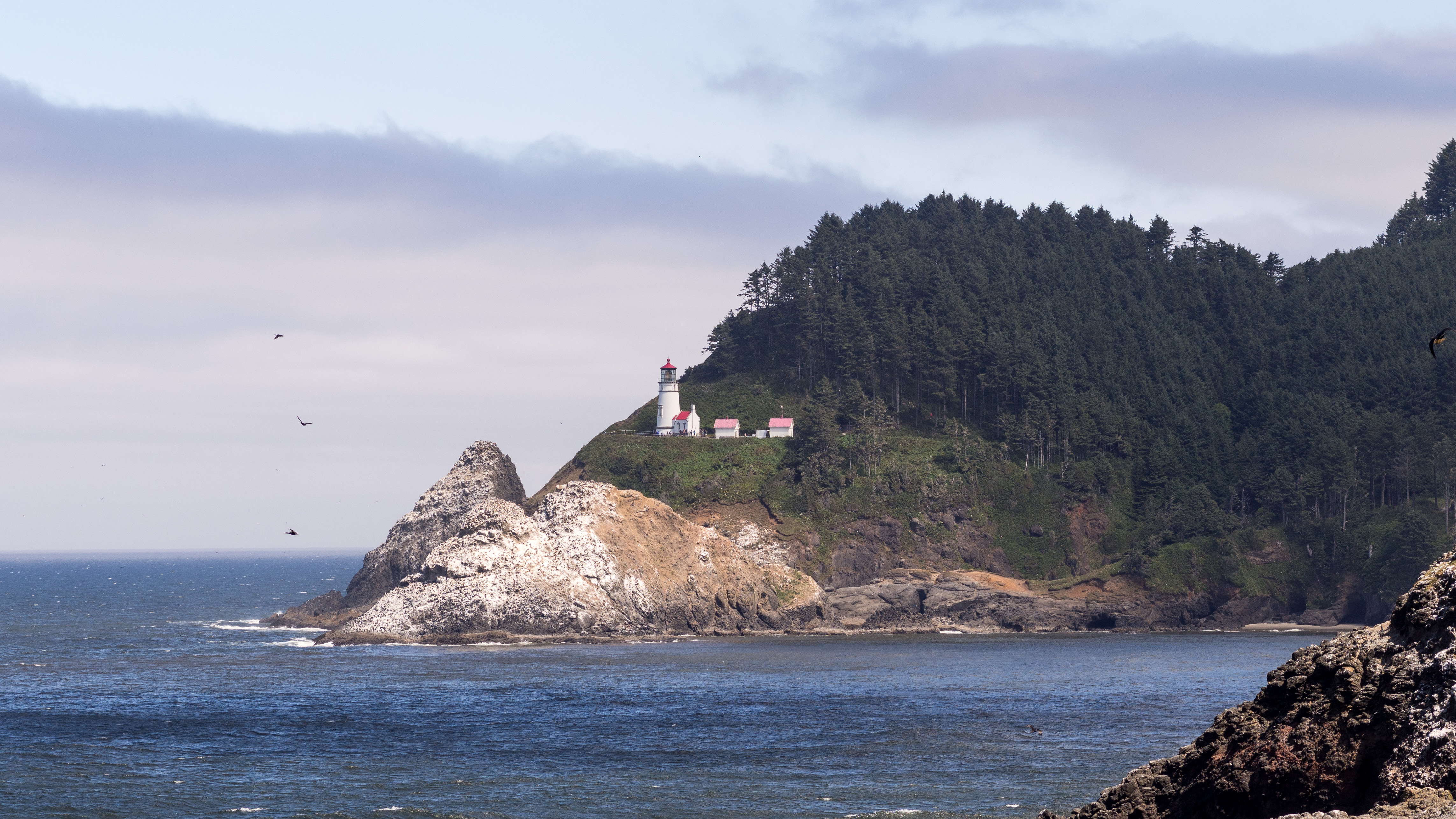 Florence Oregon Sea Lion Caves – Bryan Takes Pictures