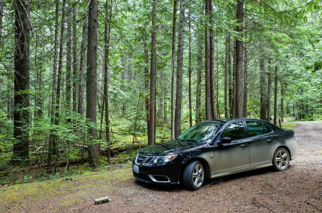 The Saab, in it's natural environment.